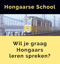 Hongaars leer je op de Hongaarse school in Haarlem